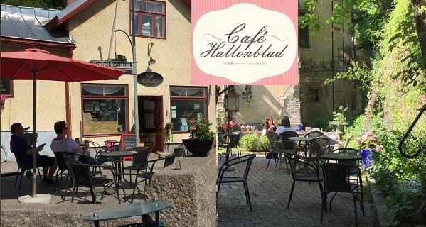 Hallonblad Café