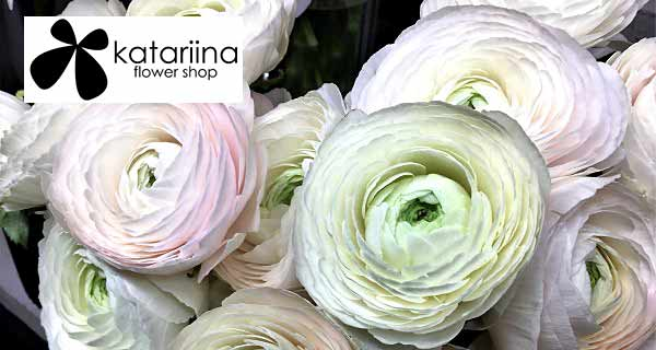 Kaarina - Katariina Flower Shop